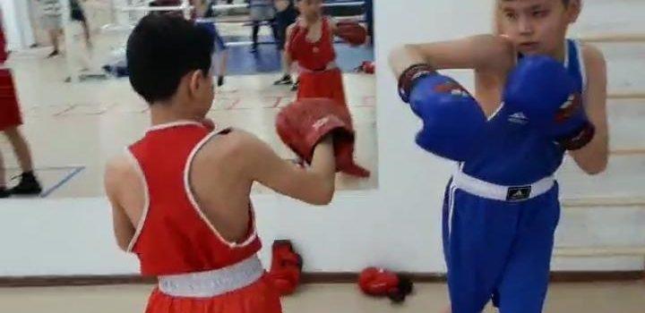 Методы бокса